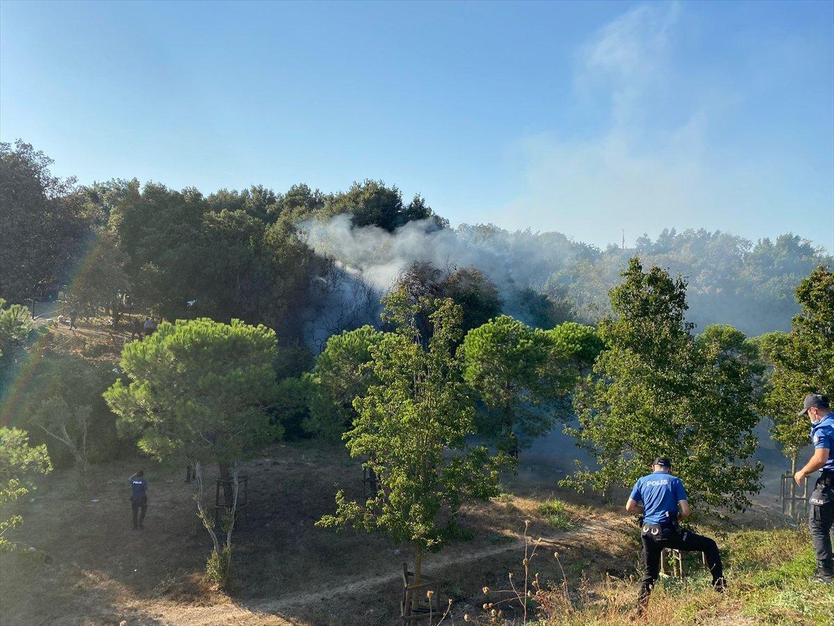 Altunizade'de ağaçlık alanda çıkan yangın söndürüldü #1