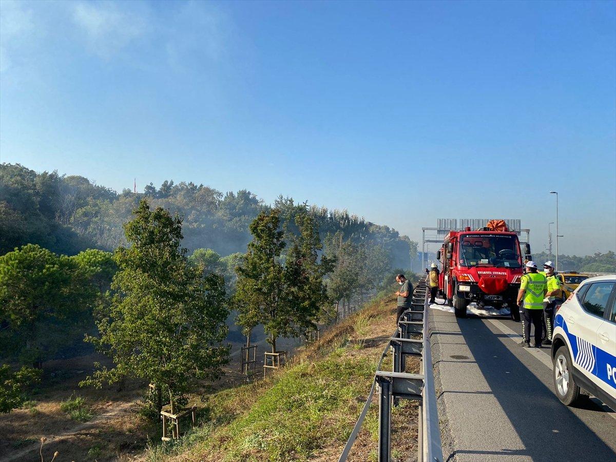 Altunizade'de ağaçlık alanda çıkan yangın söndürüldü #2