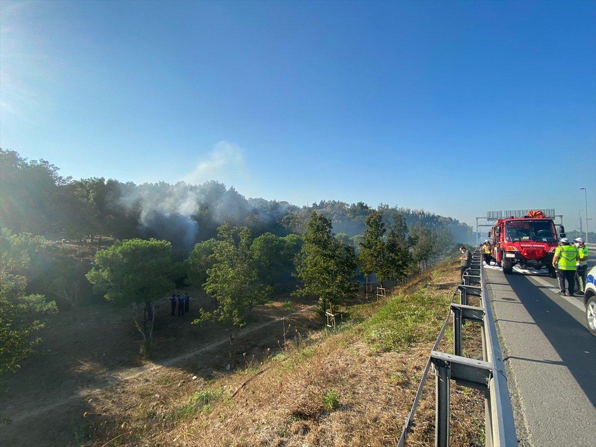 Altunizade'de ağaçlık alanda çıkan yangın söndürüldü #4