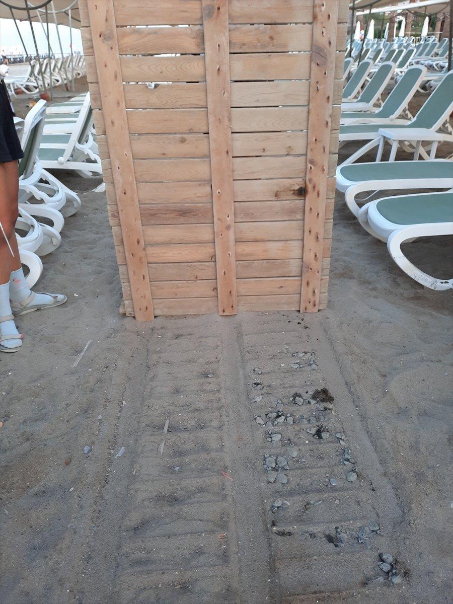 Antalya da caretta carettaların ölümüne neden olan iki otele ceza #4