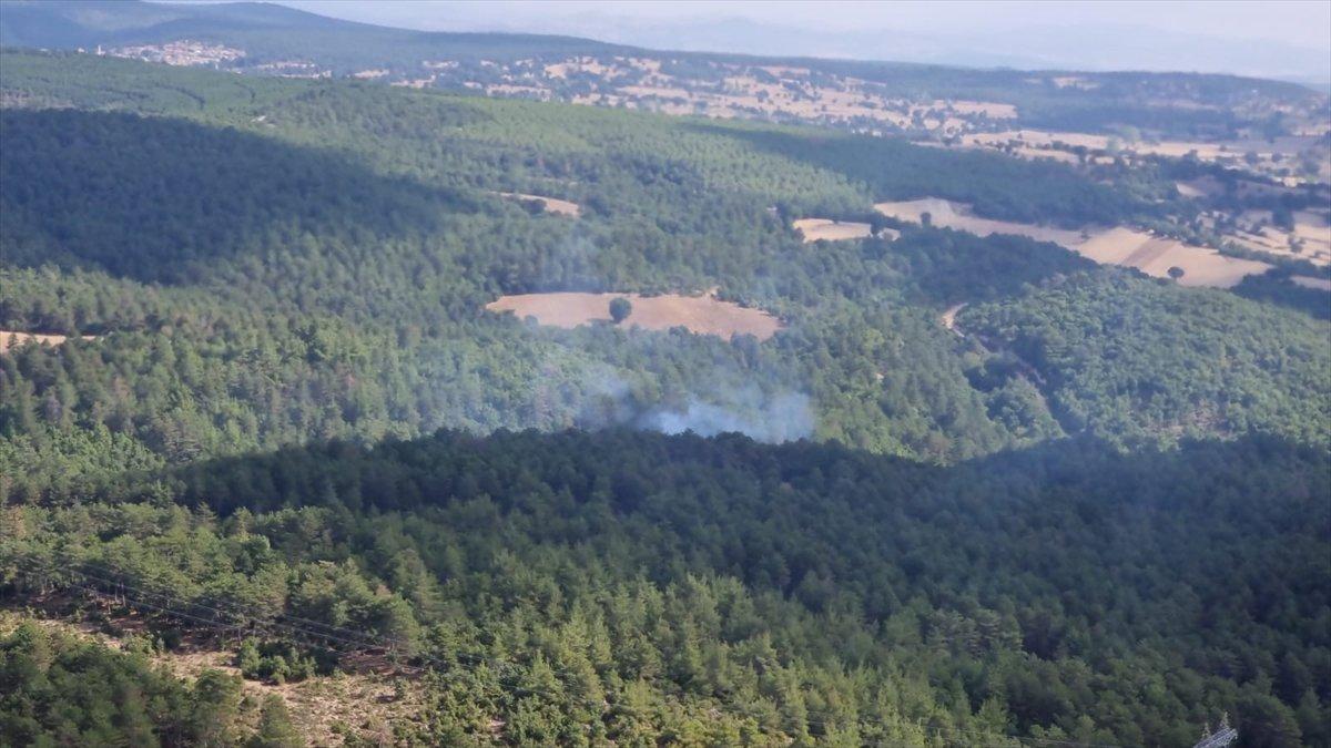 Balıkesir de orman yangını #1