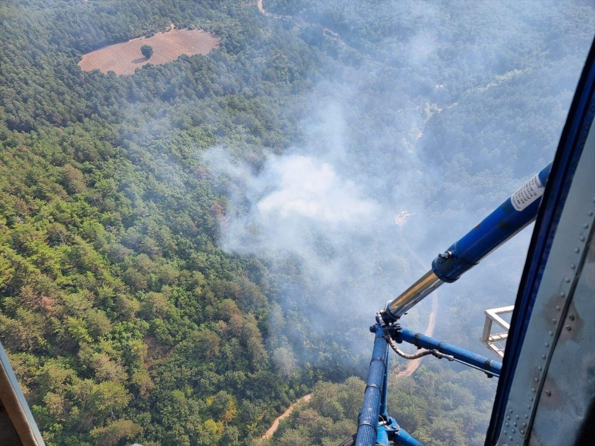 Balıkesir de orman yangını #3