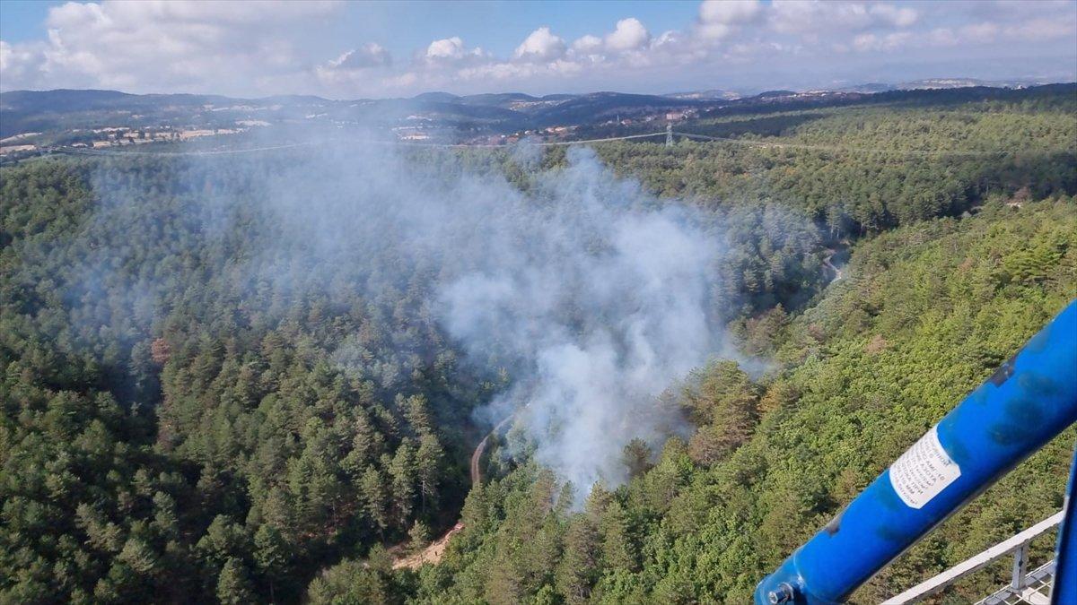 Balıkesir de orman yangını #4