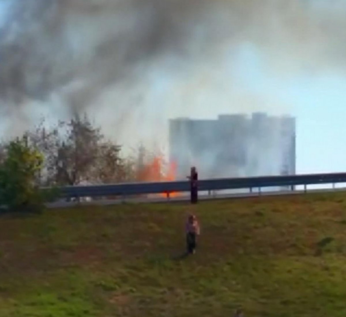 Bayrampaşa da ağaçlık alanda yangın çıktı #1