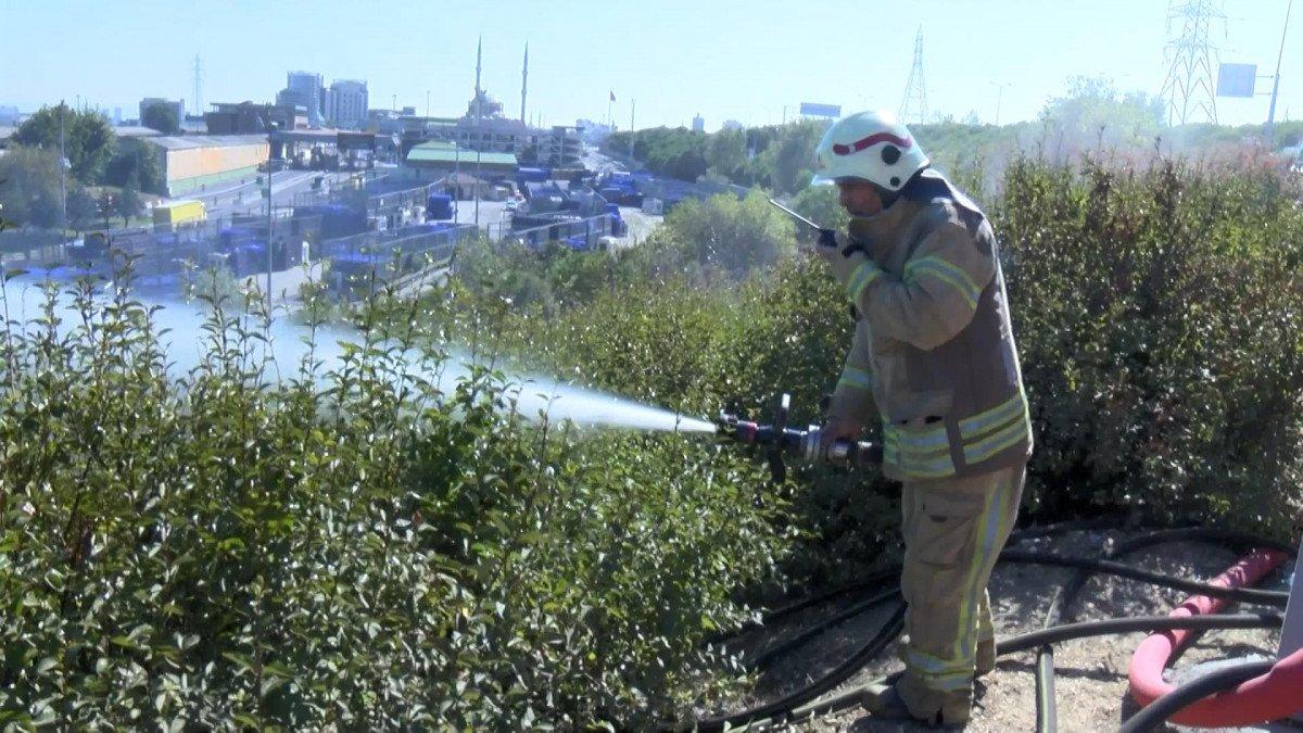 Bayrampaşa da ağaçlık alanda yangın çıktı #3