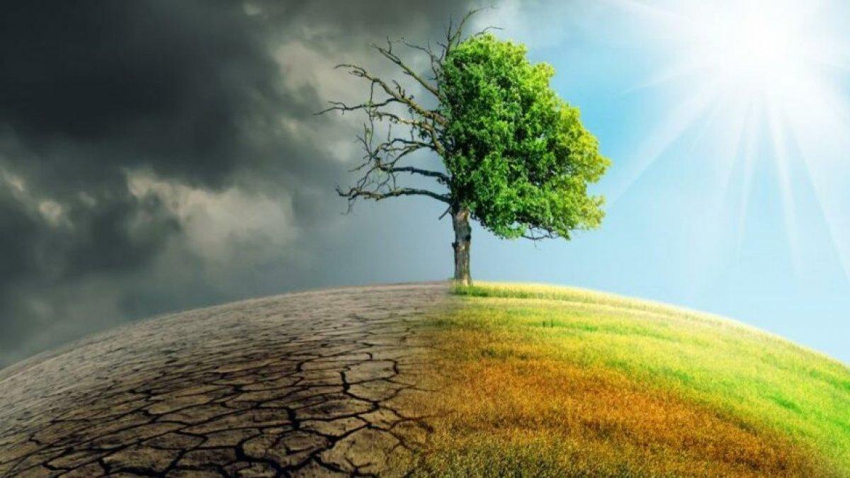 Cumhurbaşkanı Erdoğan, Paris İklim Anlaşması nı Meclis e gönderdi #2