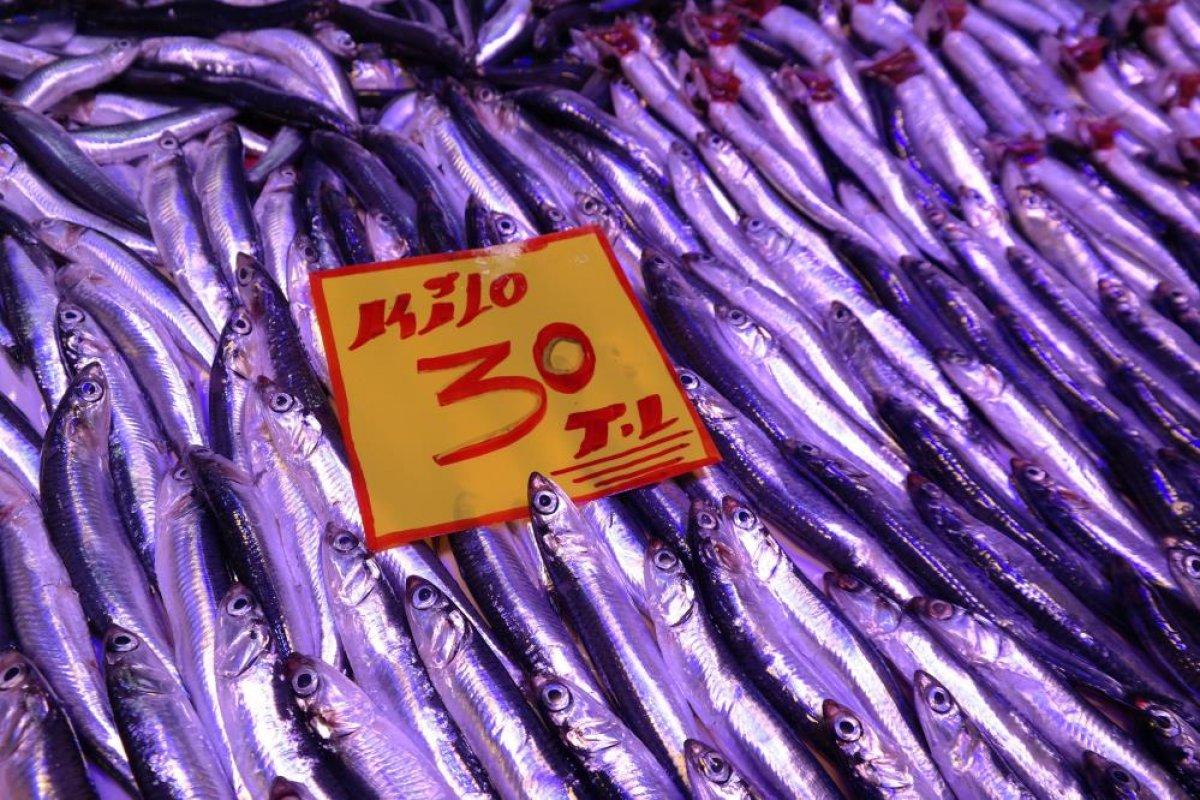 Eskişehir de tezgahtaki balıklar soğuk havaları bekliyor #3