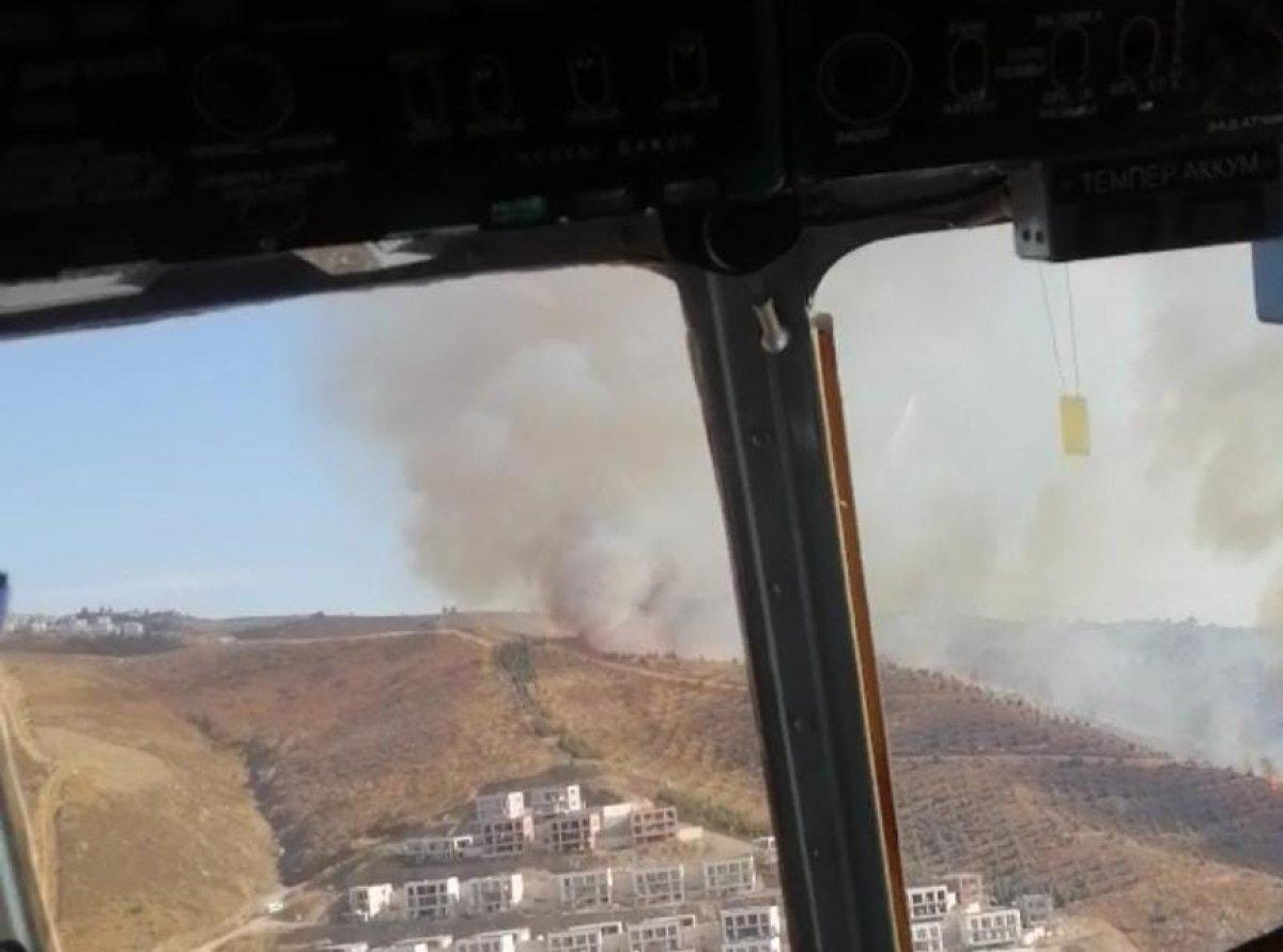 İzmir de makilik alanda yangın çıktı #2