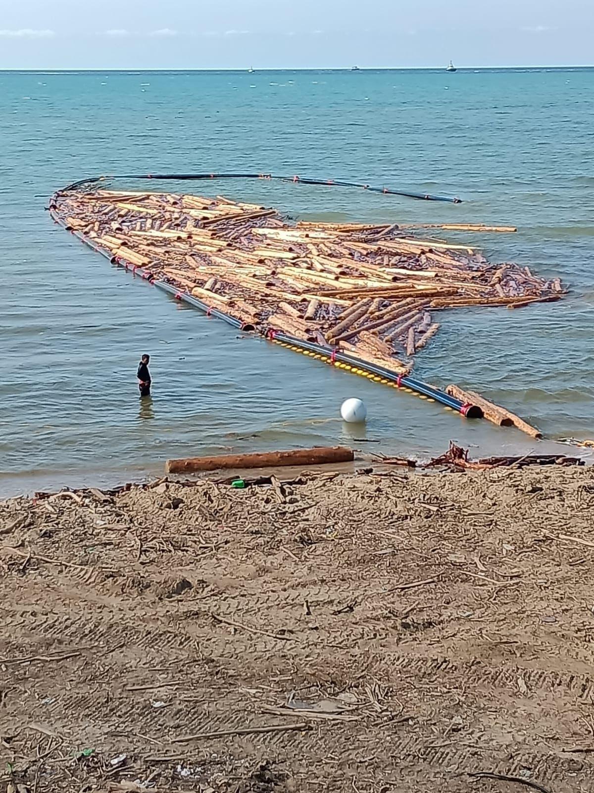 Karadeniz deki sel bölgesinde 90 bin tomruk toplandı #1