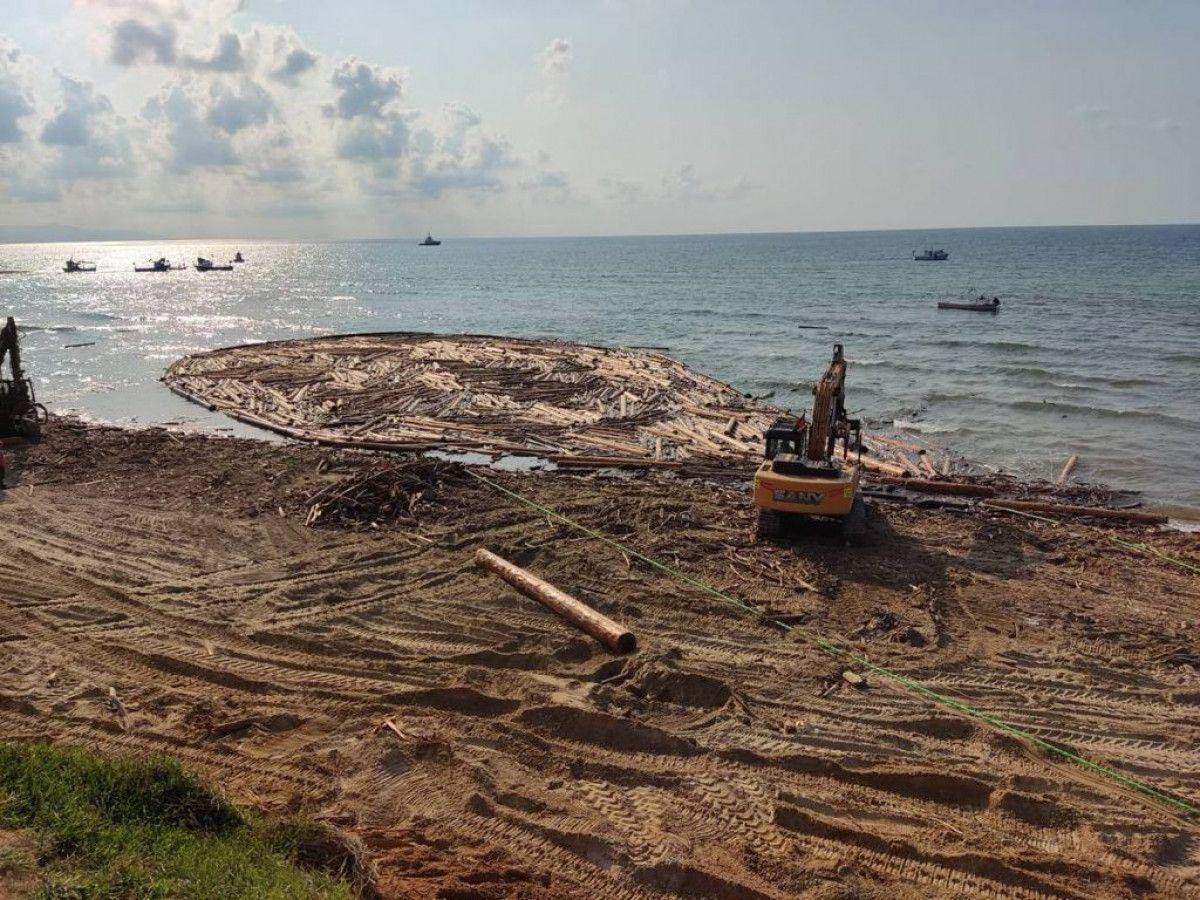 Karadeniz deki sel bölgesinde 90 bin tomruk toplandı #5