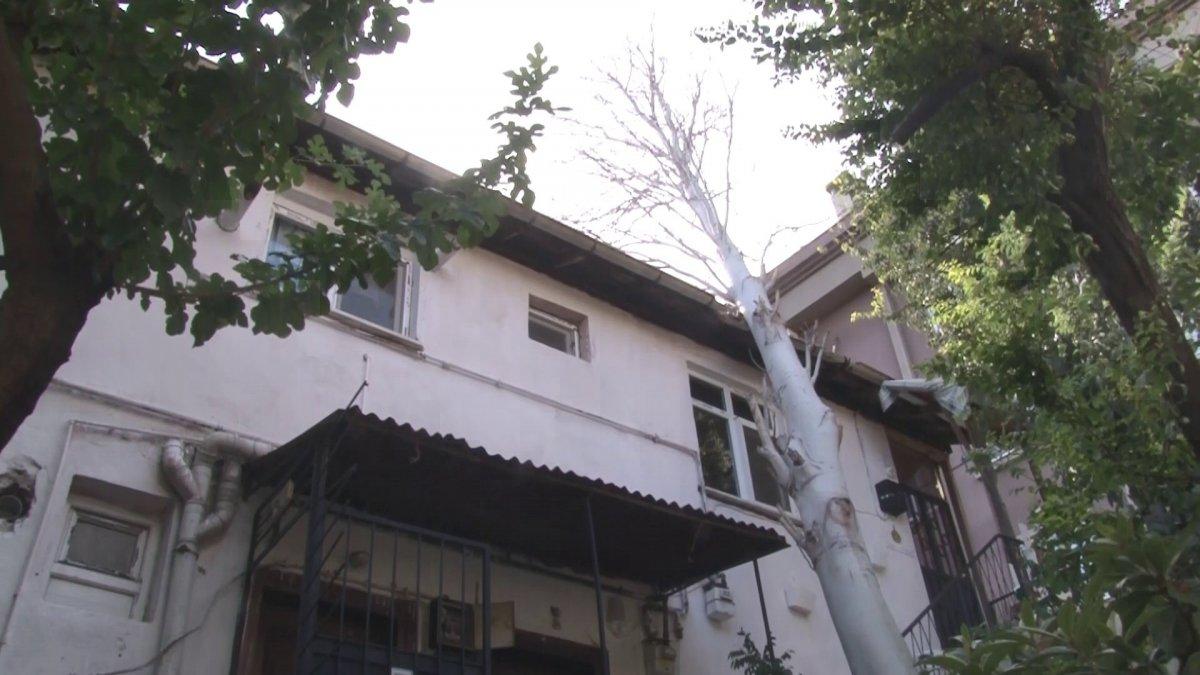 Maltepe'de evin çatısına ağaç düştü #1