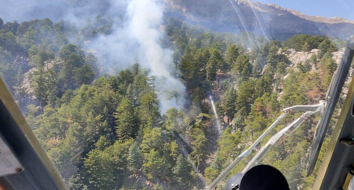 Manavgat ta orman yangını #1