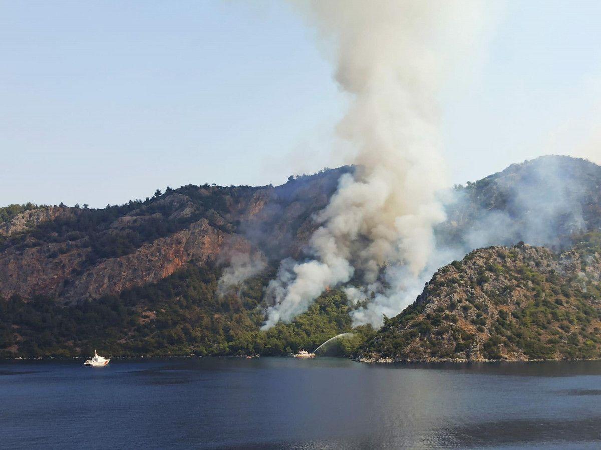 Muğla yangınlarında 52 bin hektar alan zarar gördü #3