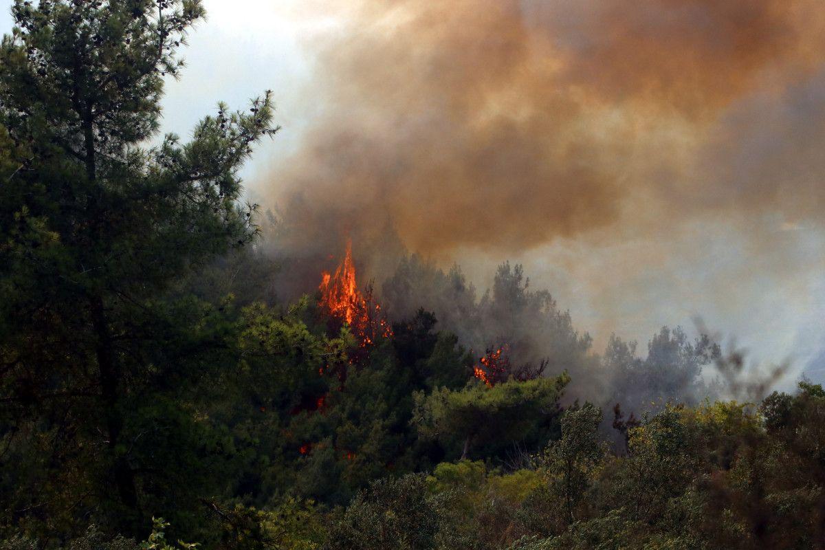 PKK lı terörist, orman yangını çıkarma talimatı aldığını itiraf etti #2