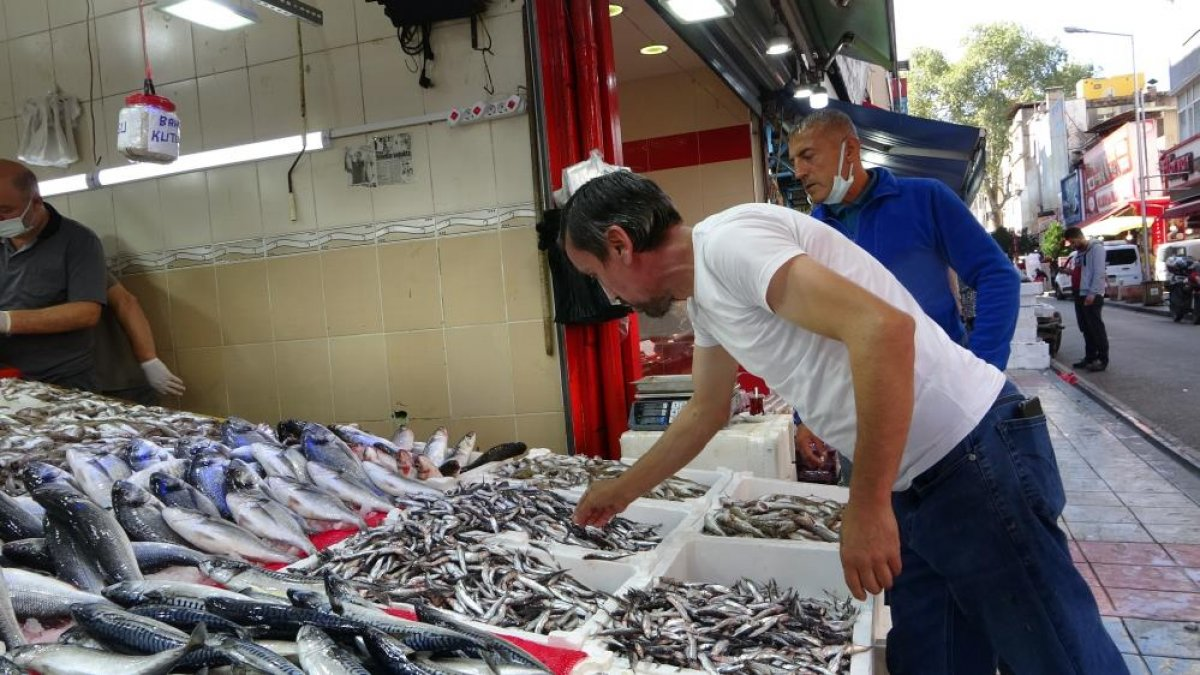 Samsun da son zamanların en bereketli balık sezonu yaşanıyor #3