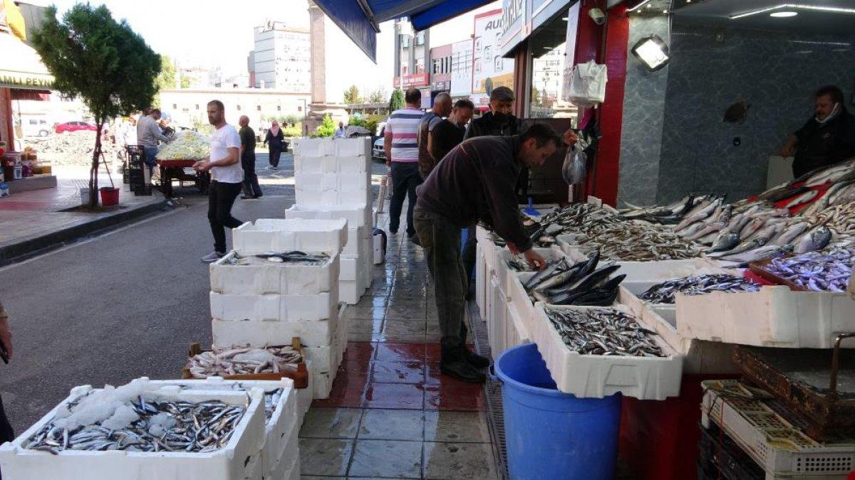 Samsun da son zamanların en bereketli balık sezonu yaşanıyor #5