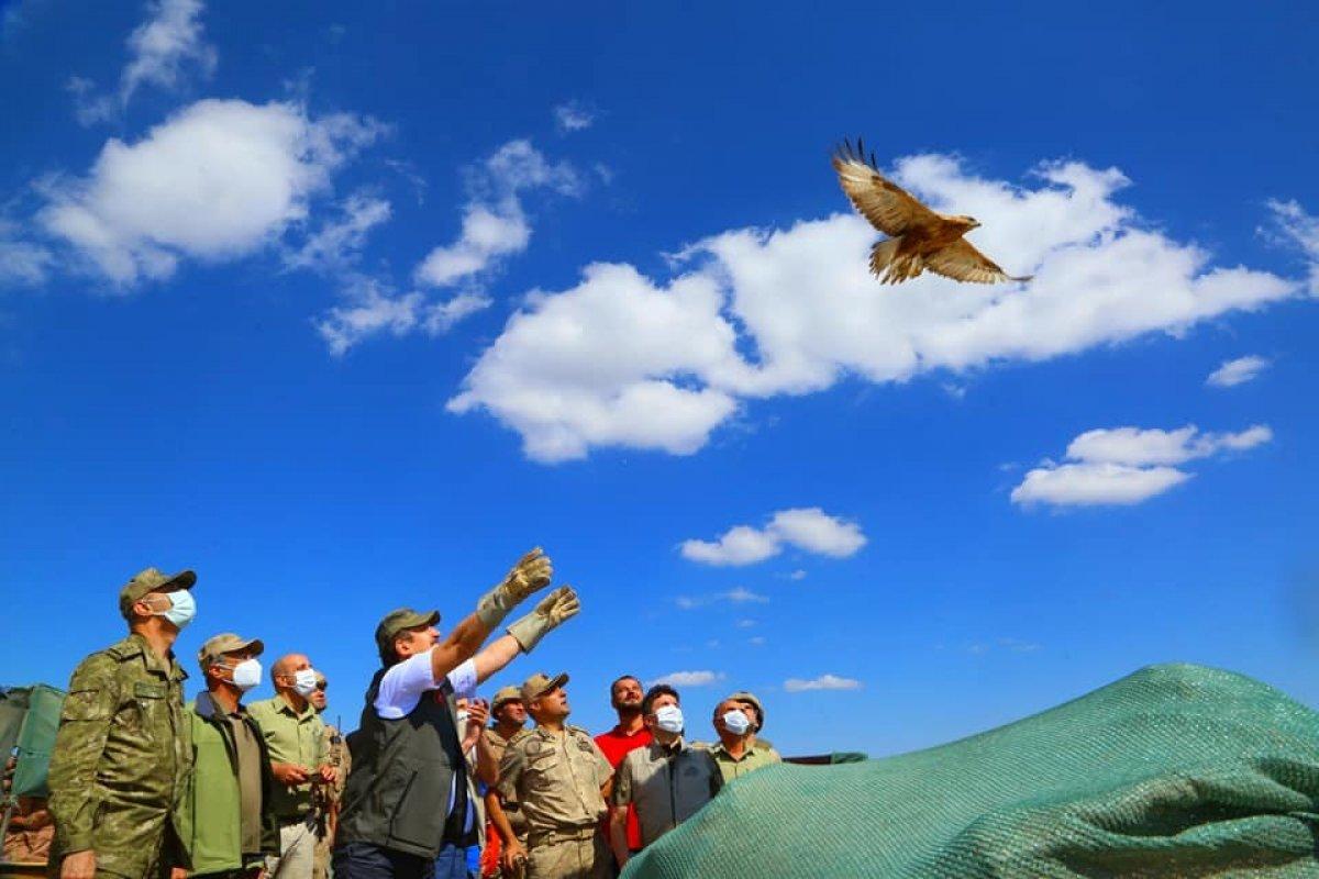 Terörden kurtarılan Cudi Dağı milli park olacak #7