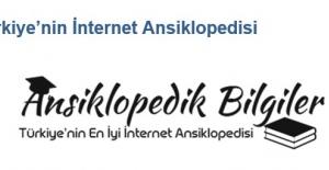 Türkiye'nin İnternet Ansiklopedisi
