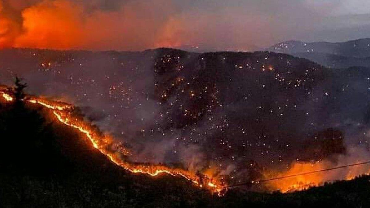 Antalya ve Muğla'da yangından zarar gören 1100 bina yıkıldı