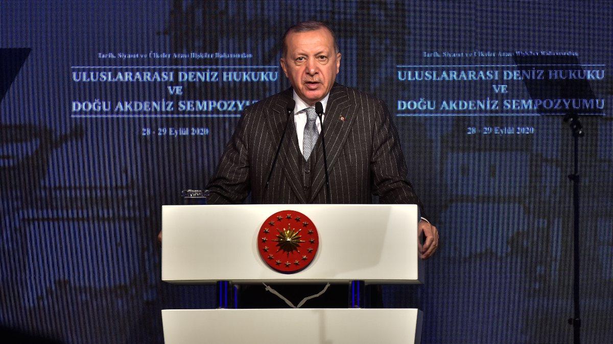 Erdoğan'dan Türkiye Azerbaycan'a silah gönderiyor eleştirilerine yanıt