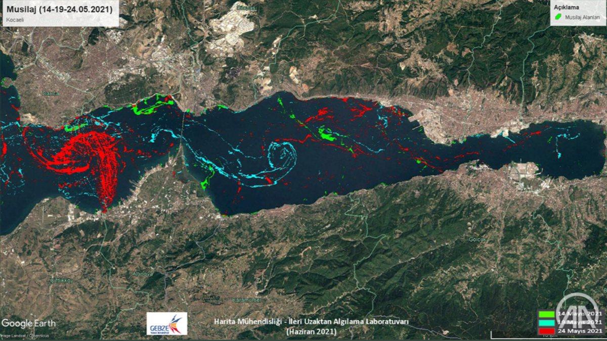 Marmara Denizi'ndeki müsilajın yoğunluk...