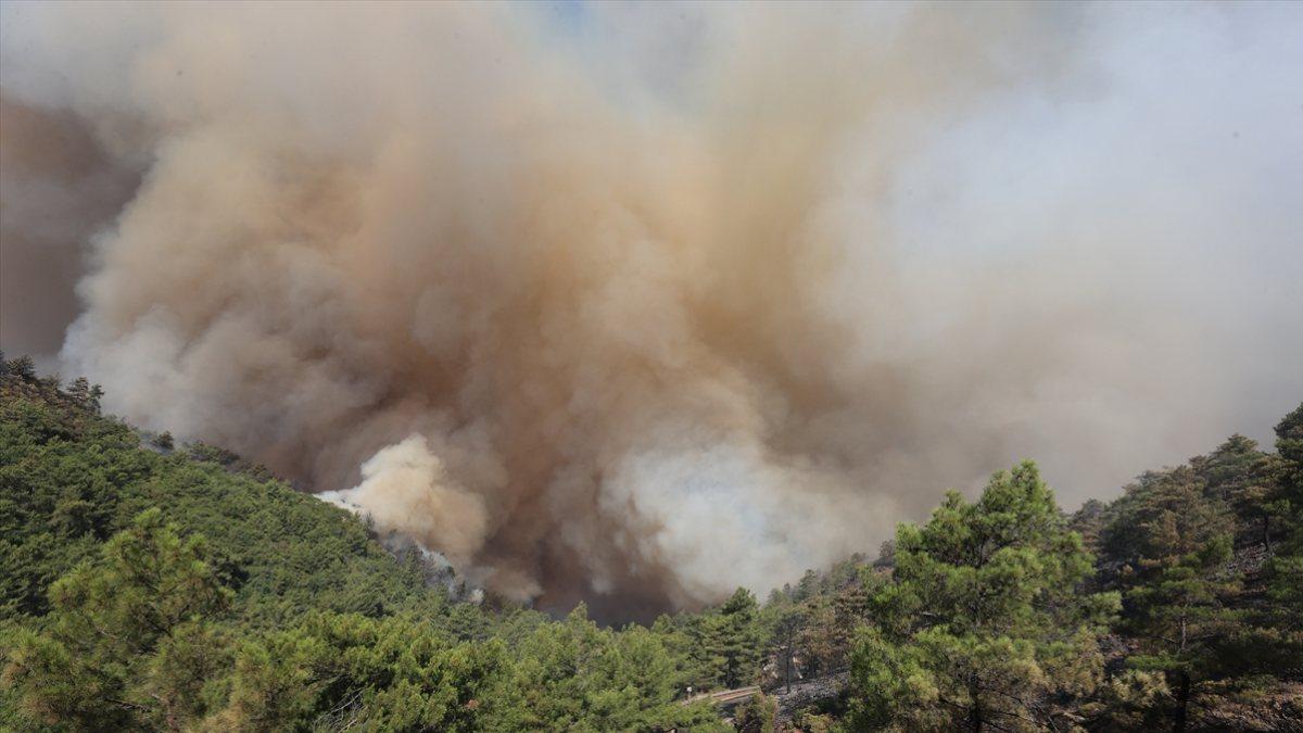Orman yangınları için özel ekip görevlendirildi