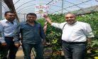 Orman'dan Kaş Köylerine Sera desteği