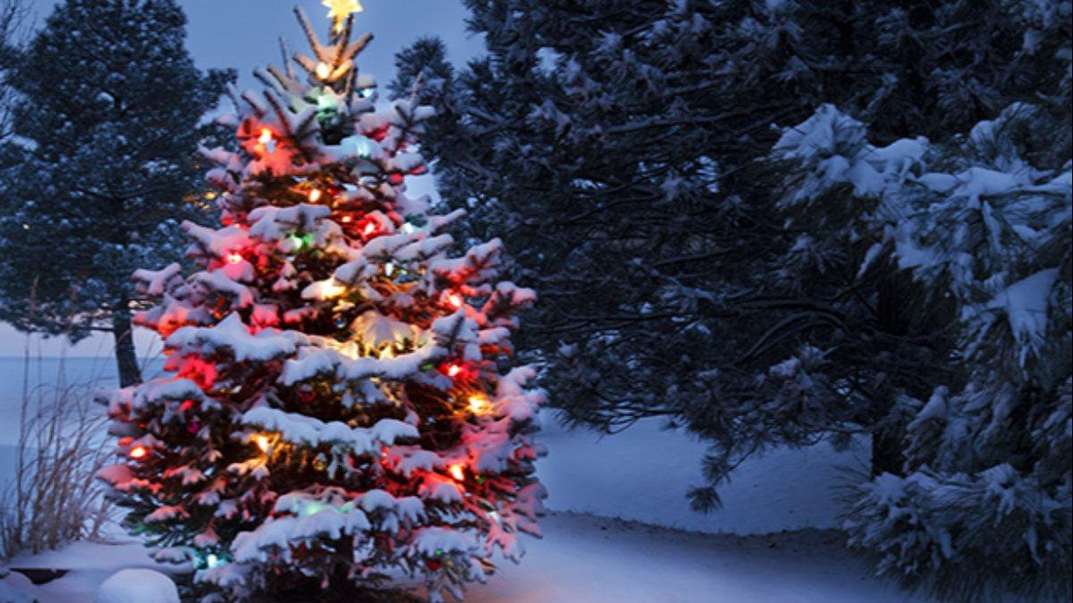 Yılbaşı ile Noel arasında ne fark vardır? Yılbaşı ağacı süslemenin anlamı nedir?